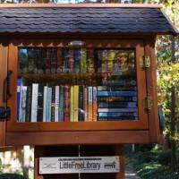 Library-Sandy-Springs-Georgia