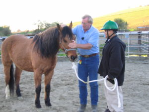 VR Doug instructing with horse